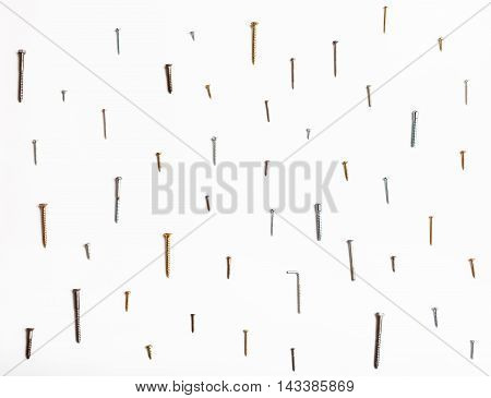 Many Wood Screws Arranged On White