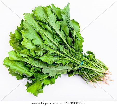 Bunch Of Fresh Cut Green Cress Herb On White