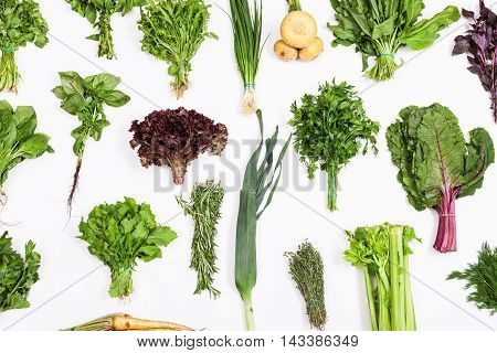 Set From Bunches Of Fresh Kitchen Herbs