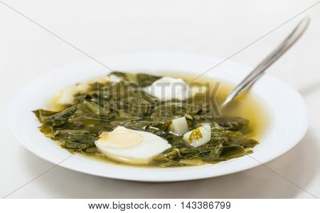 Plate With Spoon And Vegetarian Soup From Greens