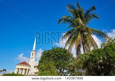 Del Ray Delray beach in Florida USA Palm trees street