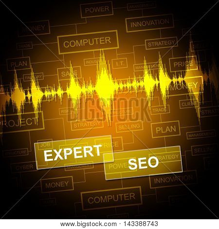 Expert Seo Indicates Search Engine And Sem