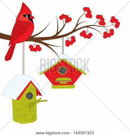 Vector Christmas cardinal set with birdhouses and berries