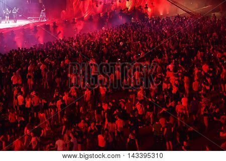 Crowd Of People Dancing At A Concert