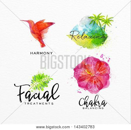 Symbols beauty natural SPA drawing with watercolor symbol bird leaf hibiscus tropical island