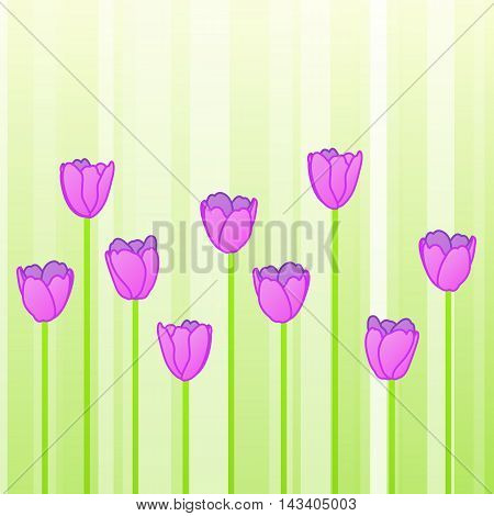 Pink Tulips In Row