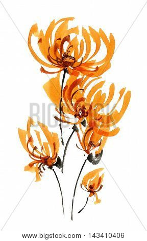Watercolor and ink illustration of chrisanthemium bouquet with flowers and buds. Oriental traditional painting in style sumi-e gohua.