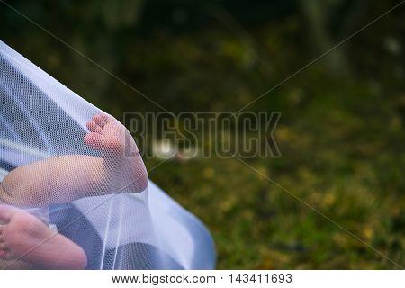 Newborn Feet Pushing A Mosquito Net