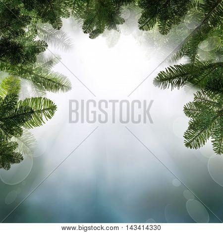 Christmas Background with Christmas Background Border with Night Sky and Xmas Tree Twig