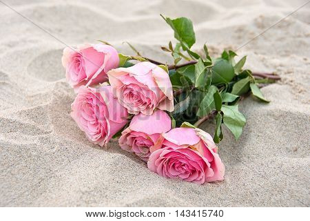 Pink rose bouquet in sand on the beach.