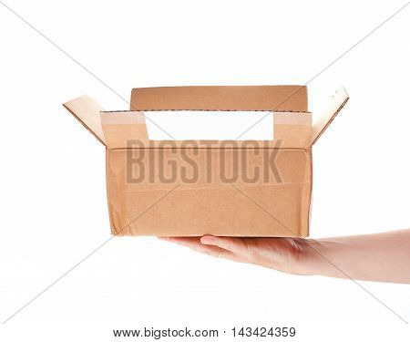 Postal Parcel In Hand On A White Background