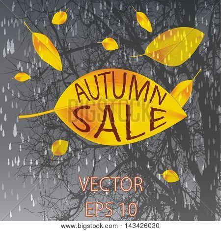 yellow leaves falling in the rain. the autumn sale. the inscription can be replaced