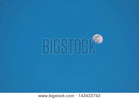 Moon in the daytime at the summer .