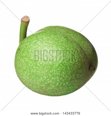 Green Walnuts Isolated On White Background