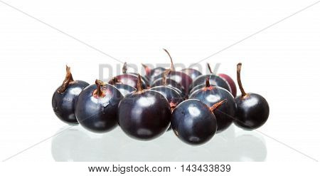 Black Currant With Shadow Isolated On White Background