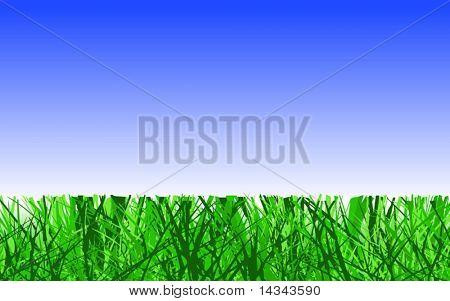Projeto vetoriais editáveis do corte do gramado