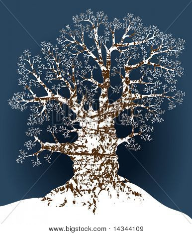 Editable vector illustration of an oak tree in winter