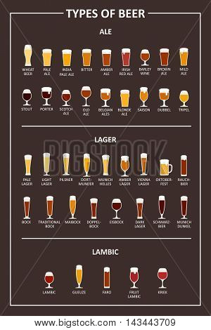 A visual guide to types of beer. Various types of beer in recommended glasses. Vector illustration
