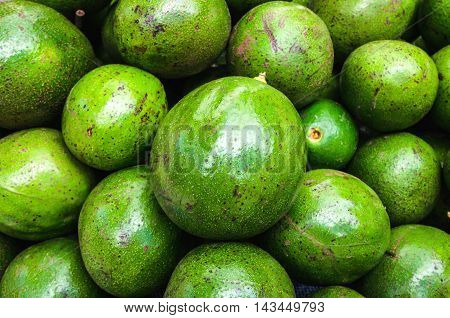 Avocado background. Fresh green avocado on a market stall. Food background.