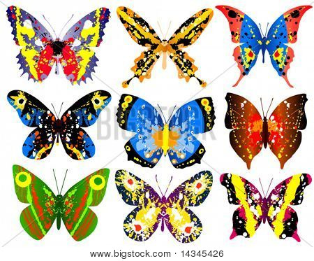 Selection of brightly colored editable vector generic butterflies