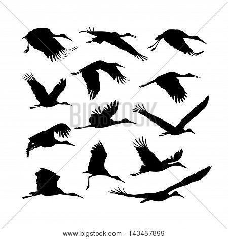 Storks birds set. Vector silhouette black on white
