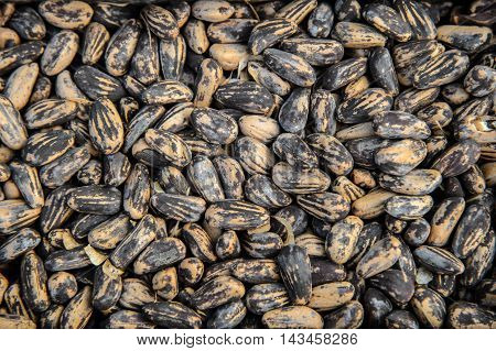 Background of the beans, many Legumes beans lentils. The texture of the raw beans moon striped colors.