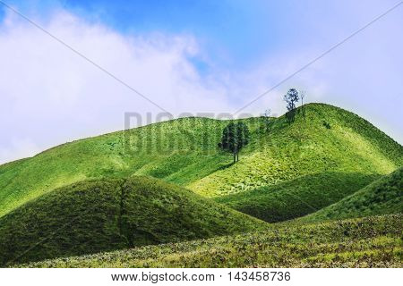 Savanna grassland hills with blu sky, in Indonesia