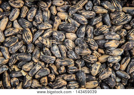 Background of the beans. Many Legumes beans. The texture of the raw beans moon striped colors.