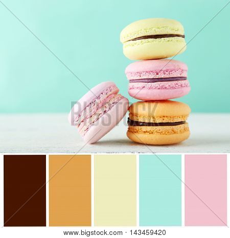 French Macarons On White Wooden Background With Color Palette