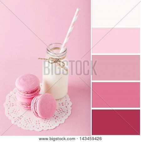 Color Palette With French Macarons With Bottle Of Milk On Pink Background