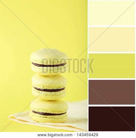 Color Palette With French Macarons On Yellow Background
