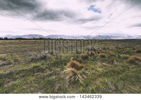 A vast farmland with mountain in the background.