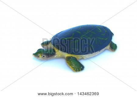 Turtle toy on a white background isolated