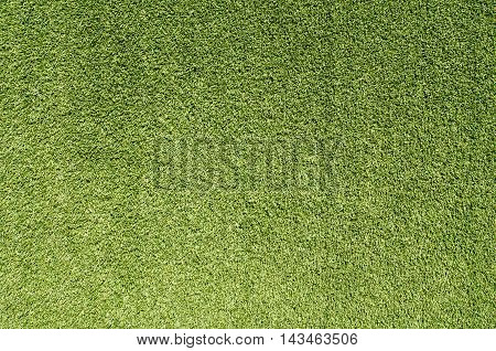 Artificial grass wall. Artificial turf. Thin green plastic