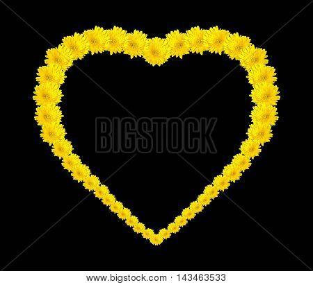 Beautiful yellow gerbera in the natural garden