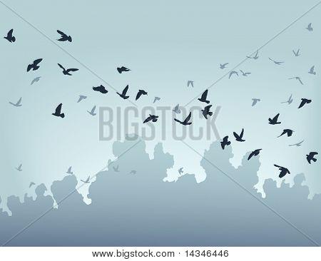 Illustration of a flock of flying birds