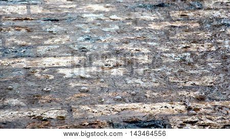 picture of a Heavy rain drops on cobblestone.