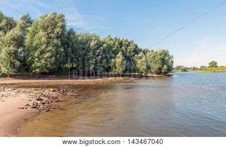 Large willow trees on the bank of a lake with a small sandy beach. It's a sunny day in summer with a blue sky.