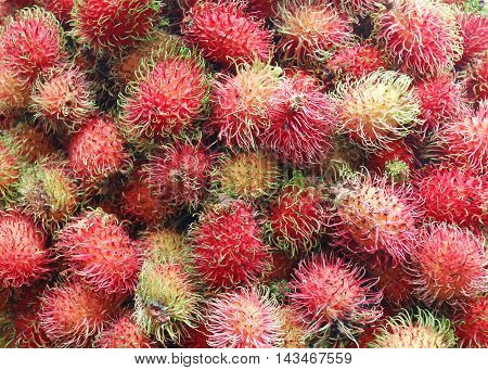 rambutan Fresh from the tree for sale