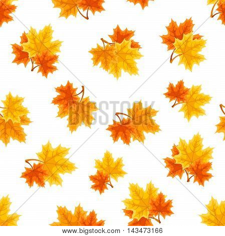 Vector seamless pattern with red, orange and yellow autumn maple leaves on a white background.