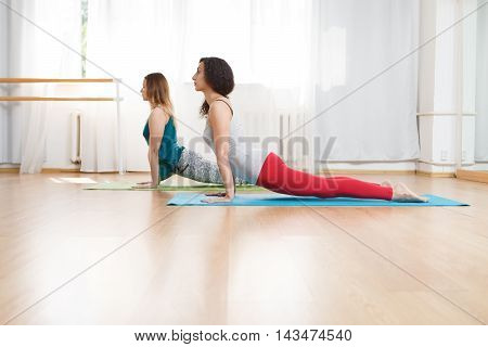 Two young caucasian girls in bhudjangasana position, cobra asana in yoga class