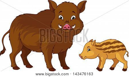 Wild boar with her cub, EPS 8