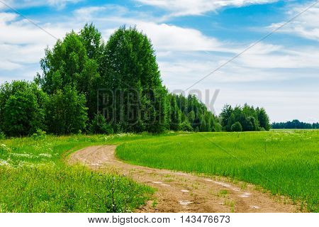 Dirt road in the field a summer day