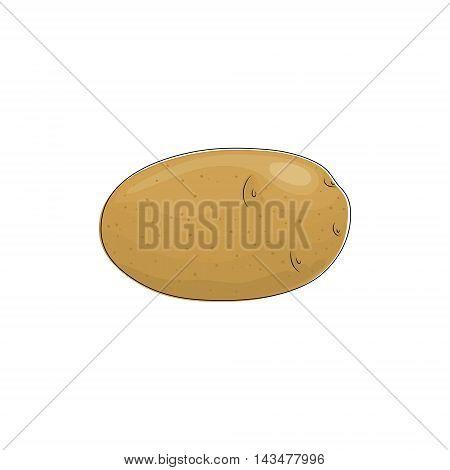 Potato Standing Isolated on White Background ,Vegetables Praties ,Edible Fruit ,Vector Illustration