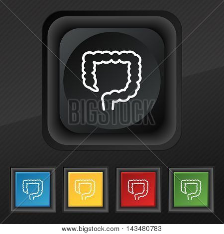 large intestine icon symbol. Set of five colorful stylish buttons on black texture for your design. Vector illustration