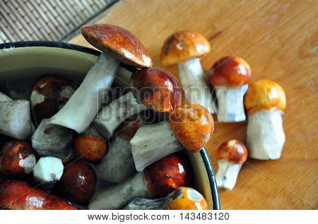 Fresh wet edible mushrooms with red caps and white trunks in a bowl. Selective focus.