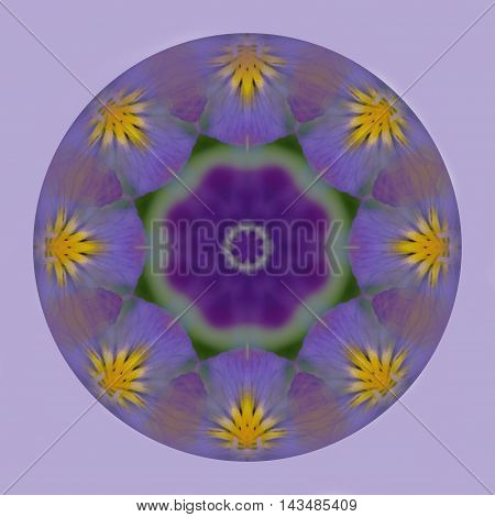 Circular kaleidoscope globe of purple pansy flower on a lilac background in square format. Tileable for repeat pattern.