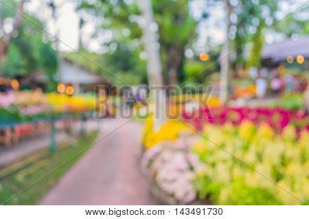 Blur Flower Garden
