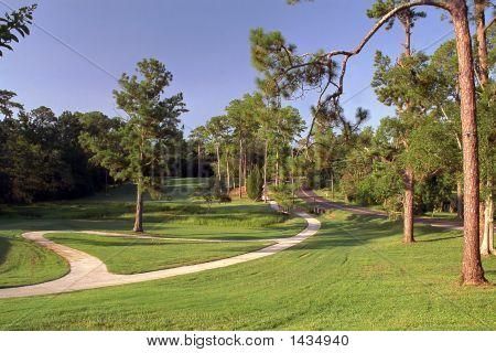 Enrolamento Simpson caminho de carrinho de Golf