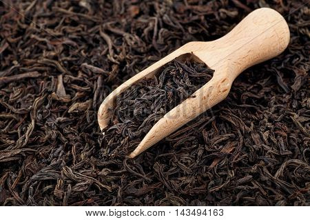 Dry black tea on a wooden spoon on a black tea background. Tea leaves background. Black tea.